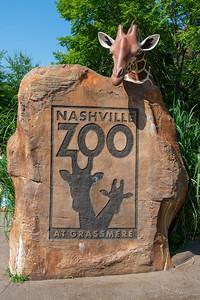 Zoo Day, NBA