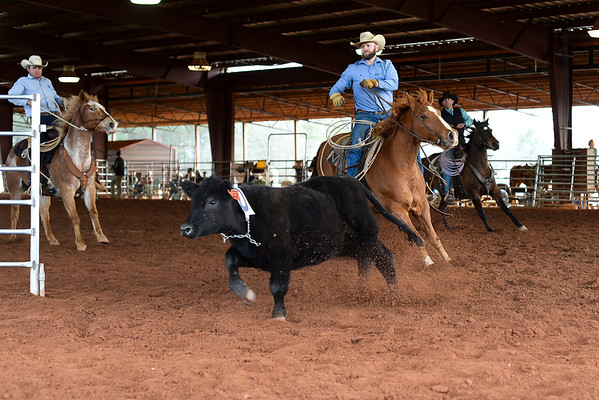 2 27 21 Ranch Rodeo n 336