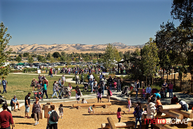 2nd Annual Martial Cottle Harvest Festival