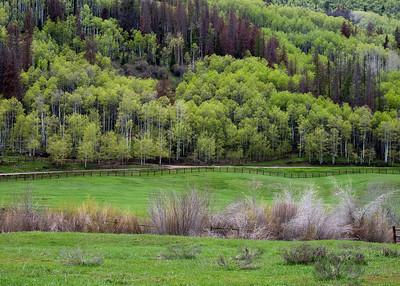 3 Forks Ranch - SMT Retreat