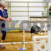 Debbie Spence and Ryker compete at the Tyler Obedience Training Club USDAA Agility Trials at Texas Rose Horse Park in Tyler, Texas, on Friday, March 30, 2018. (Chelsea Purgahn/Tyler Morning Telegraph)