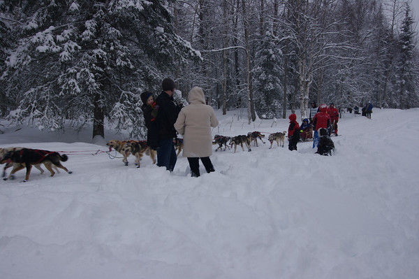 3/3/2012 - 40th Iditarod Ceremonial Start