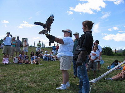 DNRT Board member Diane Camacho (holding the bird) with Master Falconer Lorrie Schumacher from Talons looking on