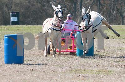 1836 Chuckwagon Races