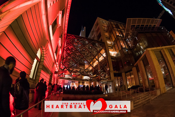 3rd Annual HeartBeat Gala 2016