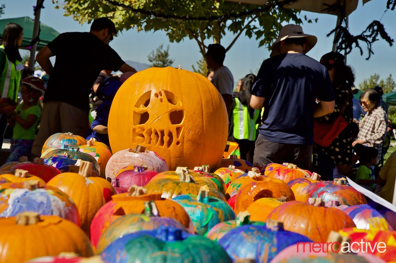 3rd Annual Martial Cottle Harvest Festival