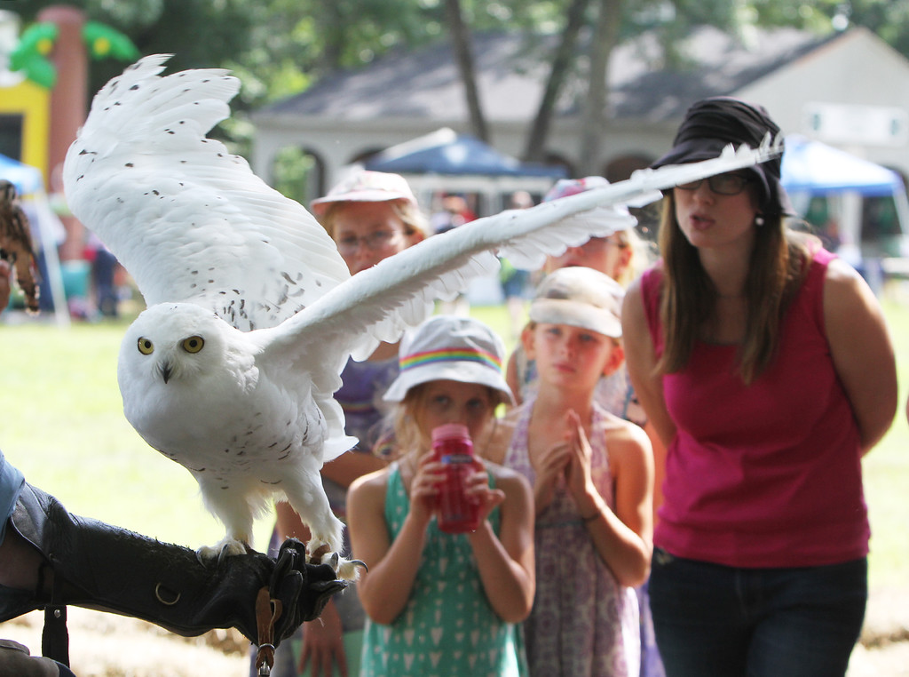 . Middlesex County 4-H Fair. From left front, Naomi King, 6, her sister Johanna, 8, and mother Jennifer King of Ayer watch a snowy owl held by Marcia Wilson of Eyes on Owls. (SUN/Julia Malakie)