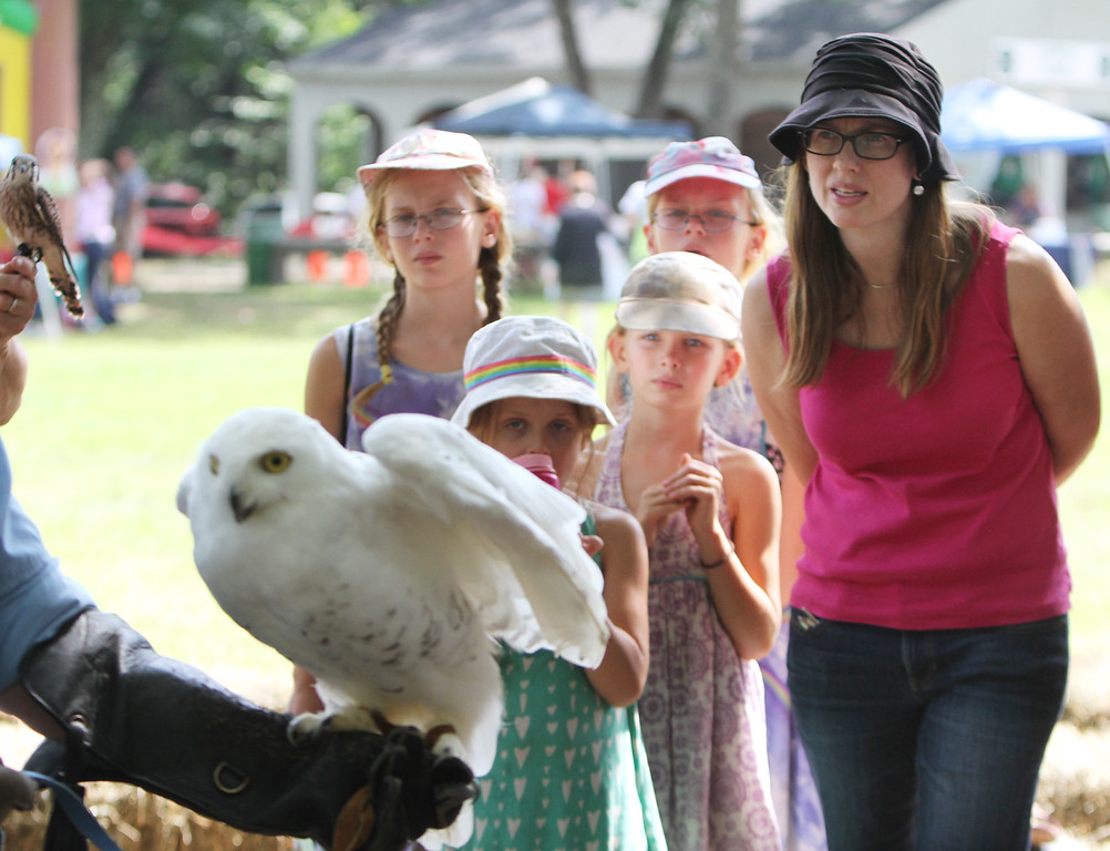 . Middlesex County 4-H Fair. Sisters Naomi King, 6, front left, Johanna, 8, and twins Anna, left rear, and Abby, 11, and mother Jennifer King of Ayer watch a snowy owl held by Marcia Wilson of Eyes on Owls. (SUN/Julia Malakie)