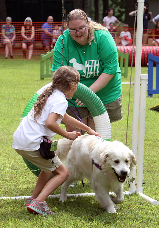 ". Middlesex County 4-H Fair. Alison MacKinnon, 9, of Lowell, guides her golden retriever, Horton, through the ""Try It\"" round of the agility competition, for first-time dog entrants. Helping is Laura Davidson of Pepperell, leader of the Crate Escape 4-H dog club.(SUN/Julia Malakie)"
