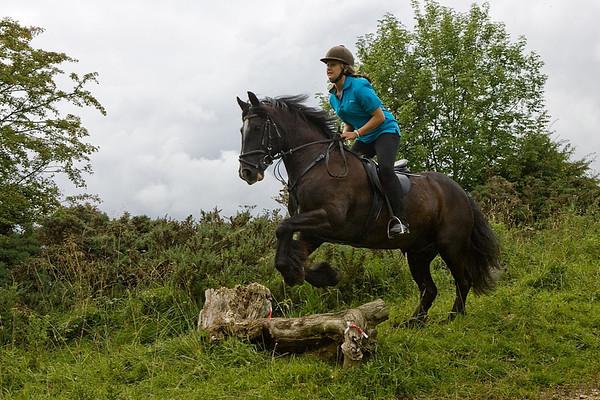 4 Shires Elton rideout