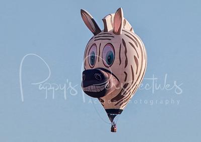 40th Annual Albuquerque International  Balloon Fiesta 2011