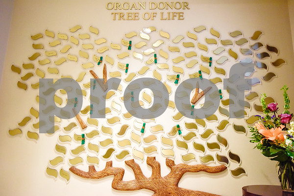 The Organ Donor Tree of Life honoring local organ and tissue donors, photographed at Christus Mother Frances Hospital – Tyler in Tyler, Texas, on Thursday, April 20, 2017. Nineteen Tyler-area organ and tissue donors from the previous two years were honored by their family and friends at the event. (Chelsea Purgahn/Tyler Morning Telegraph)