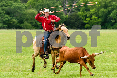 A man prepares to rope cattle during the fifth annual 1836 Chuckwagon Race presented by Diamond Ranch in Neches, Texas, on Friday, April 21, 2017. Hundreds came to the event to see cattle roping, horse racing, live music and more. (Chelsea Purgahn/Tyler Morning Telegraph)