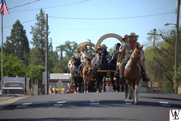 49er Wagon Train 2016