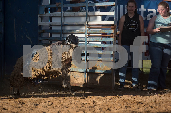 A child rides on the back of a lamb for the mutton bustin' competition at the Lindale Championship Rodeo on Thursday May 17, 2018.  (Sarah A. Miller/Tyler Morning Telegraph)