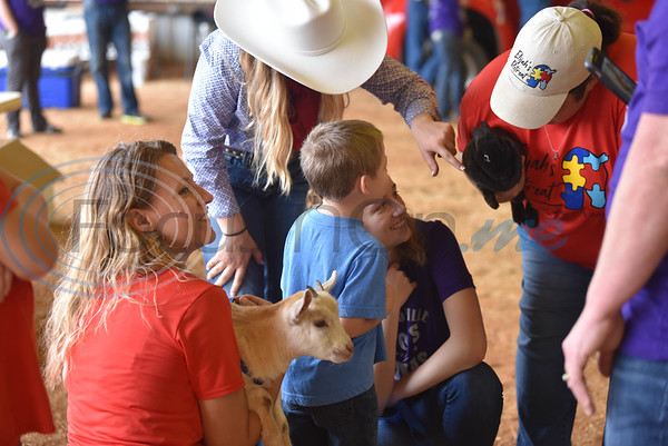 Young children get to pet farm animals at the Special Needs Junior Rodeo in Jacksonville on Saturday, May 18. The event is part of the annual TOPS in Texas Rodeo. (Jessica T. Payne/Tyler Morning Telegraph)