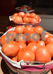Tomatoes sit on display at the Jacksonville Tomato Fest Saturday June 11, 2016 in Jacksonville, Texas. In its 32nd year, the week-long festival included tomato themed events such as a salsa contest,  best homegrown tomato contest and eating contest as well as other activities such as a murder mystery dinner, ski show and dodgeball tournament.  (Sarah A. Miller/Tyler Morning Telegraph)