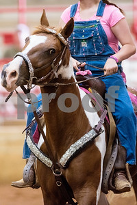 A horse during the quadrille competition at Super Ride XV at Henderson County Regional Fair Park Complex in Athens, Texas, on Wednesday, June 21, 2017. The event features a variety of equestrian competitions such as trick riding and vaulting. (Chelsea Purgahn/Tyler Morning Telegraph)