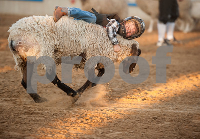Rex Mathews of Big Sandy competes in Mutton Busting before the start of the XTreme Bulls night at the Gladewater Round-Up Rodeo Wednesday June 7, 2017.  (Sarah A. Miller/Tyler Morning Telegraph)