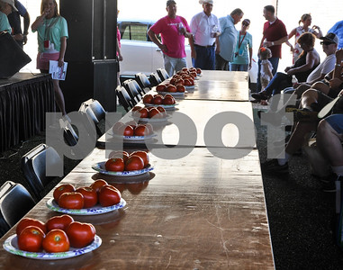 Tomatoes line several tables at the 34th Annual Tomato Fest in preparation for the festival's famous Tomato Eating Contest. The festival was held on Saturday, June 9 in Jacksonville. (Jessica T. Payne/Tyler Paper)