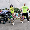 John P. Cleary | The Herald Bulletin <br /> Entire families, including the dogs, participated in the Walk for Hope Addiction Awareness event and walk at Walnut Street Park in Anderson.