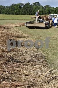 Caddo Grass House Build