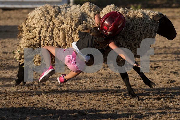 A child falls during a mutton busting competition during the Mineola Volunteer Fire Department Rodeo at the Fire Department Rodeo Arena in Mineola, Texas, on Friday, July 7, 2017. The rodeo featured a number of rodeo events from barrel racing to steer wrestling. (Chelsea Purgahn/Tyler Morning Telegraph)