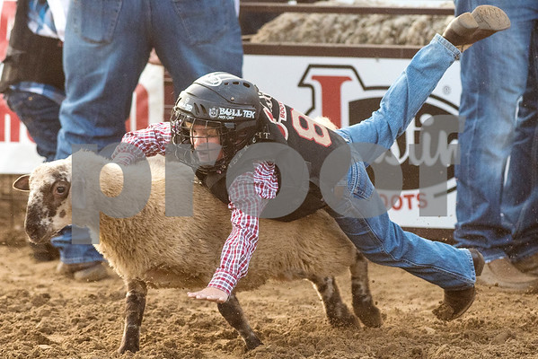 A boy falls off a sheep during a mutton bustin' competition at the 81st Gladewater Round-Up Rodeo in Gladewater, Texas, on Wednesday, June 6, 2018. The rodeo events of the evening were mutton bustin', calf scrambles and bull riding. (Chelsea Purgahn/Tyler Morning Telegraph)