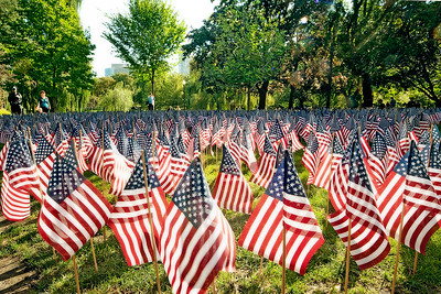 Flags were put out to honor all those who lost their lives on 9/11 in the Boston Public Gardens.