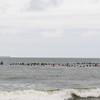 110911-Surfer's Way-573