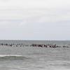 110911-Surfer's Way-572