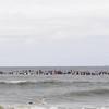 110911-Surfer's Way-570