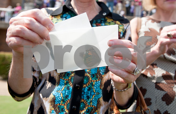 photo by Sarah A. Miller/Tyler Morning Telegraph  Mary Ann Dougherty of Tyler holds two envelopes of butterflies to be released at the Alzheimer's Alliance's butterfly release event at the Tyler Rose Garden Thursday.  The public was invited to make a donation of 25 dollars each per butterfly.  Over 1,100 butterflies were released to honor and commemorate lives touched by Alzheimer's disease and other dementias in Smith County.