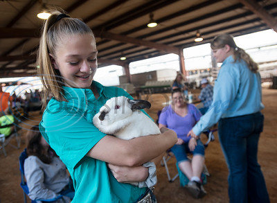 Hailey Perez, 13, of Tyler, holds her Californian rabbit before the start of the Junior Rabbit Show at the East Texas State Fair in Tyler on Tuesday Sept. 24, 2019. Perez is a member of Smith County 4-H.  (Sarah A. Miller/Tyler Morning Telegraph)