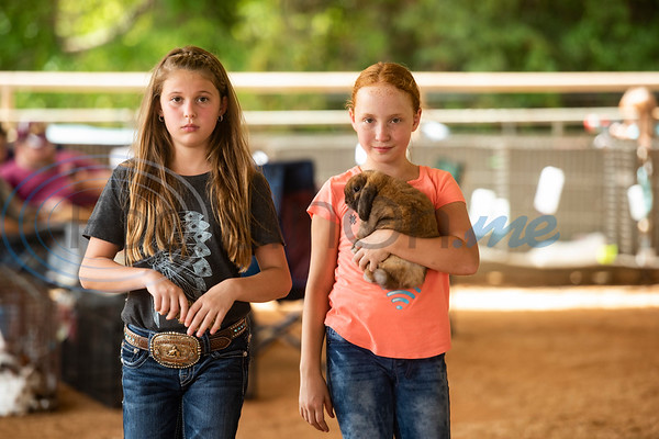 Fruitvale FFA students Ainsley Melton, 10, walks with Kyla Bain, 10, while she holds her Holland Lop rabbit before the start of the Junior Rabbit Show at the East Texas State Fair in Tyler on Tuesday Sept. 24, 2019.  (Sarah A. Miller/Tyler Morning Telegraph)
