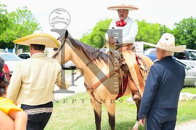 ADayinOldMexico 24Apr16-7282
