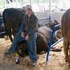 Record-Eagle/Douglas Tesner<br /> Adam DeRosha, 16, takes a seat on a big hunk of beef at Northwestern Michigan Fair.