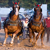 Record-Eagle/Douglas Tesner<br /> Ben Reed of Bear Lake drives his horses as they pull a sled full of concert blocks during the draft horse pull.