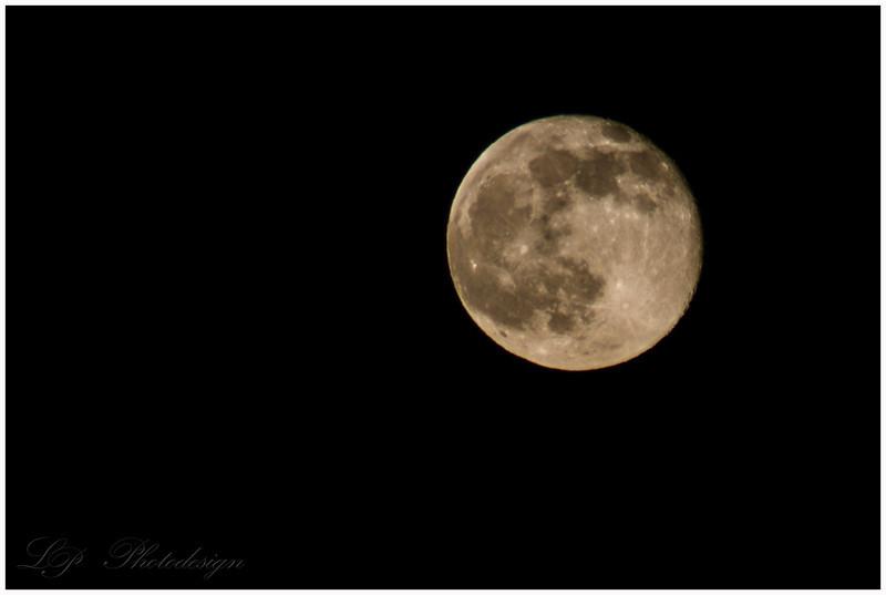 Day 13, Full Moon Phase: Waning Gibbous