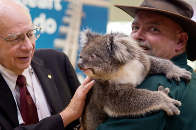 And Chevron brings a Koala Bear to greet attendees.