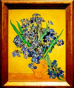 van Gogh: Irises