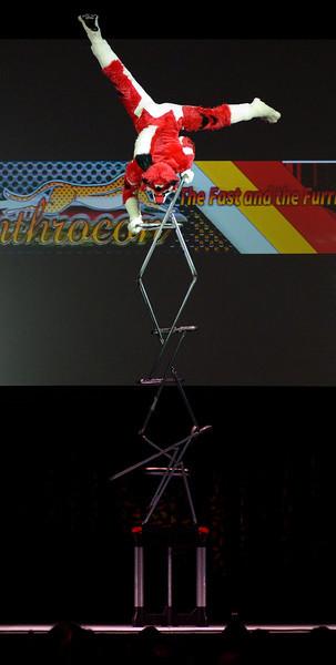 Anthrocon 2013