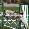 Agility ARC Nationals May 15 2017MelissaFaithKnightFaithPhotographyNV_6311