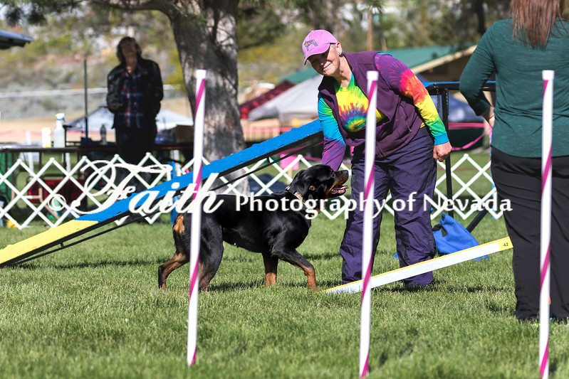 Agility ARC Nationals May 15 2017MelissaFaithKnightFaithPhotographyNV_6349
