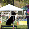 Agility ARC Nationals May 15 2017MelissaFaithKnightFaithPhotographyNV_6418