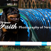Agility ARC Nationals May 15 2017MelissaFaithKnightFaithPhotographyNV_6384