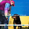 Agility ARC Nationals May 15 2017MelissaFaithKnightFaithPhotographyNV_6356