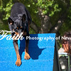Agility ARC Nationals May 15 2017MelissaFaithKnightFaithPhotographyNV_6441