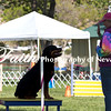 Agility ARC Nationals May 15 2017MelissaFaithKnightFaithPhotographyNV_6421