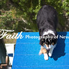 Agility ARC Nationals May 15 2017MelissaFaithKnightFaithPhotographyNV_6509
